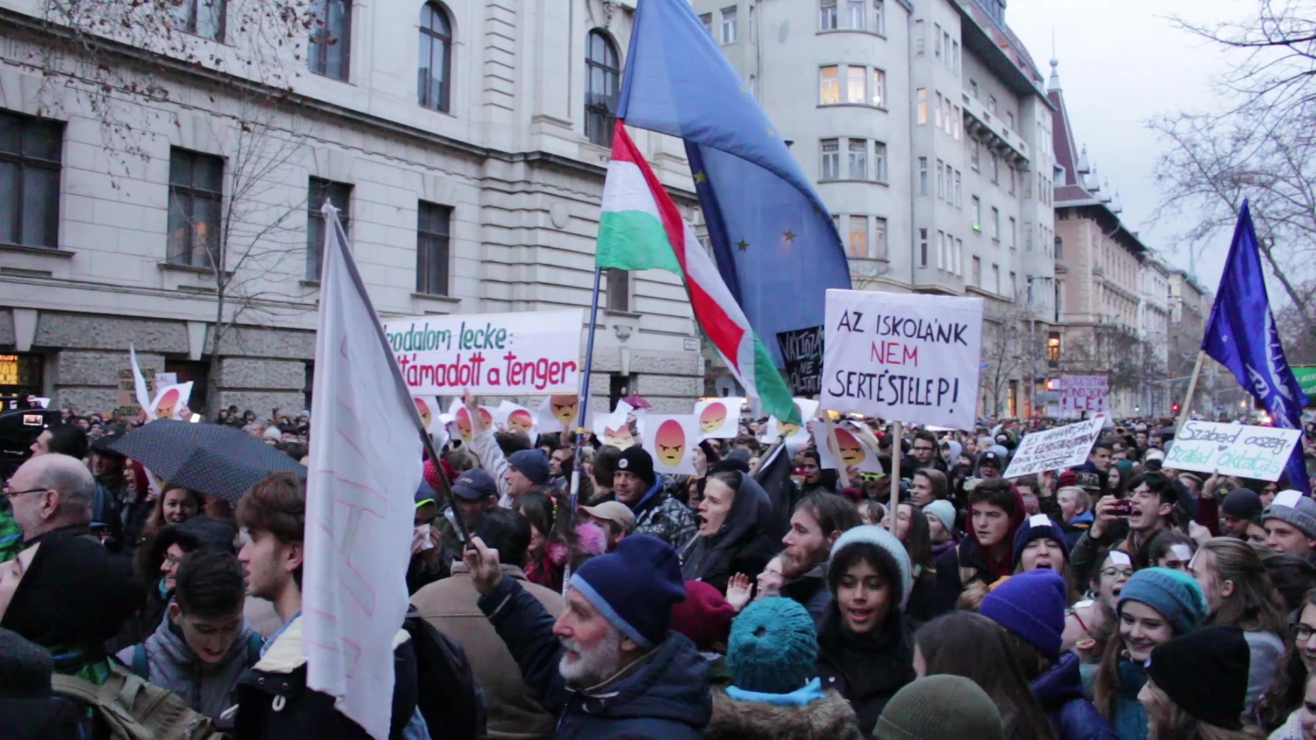 Hungarian Students Demonstration